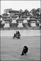 Dog and couple on moped with 108 stupas. Dochula Pass, Bhutan 2004
