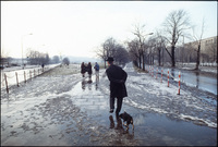 Dog walker. Krakow, Poland 1979